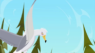 S1 E9 Seagull that poops on Reef