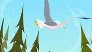 S1 E9 The Seagull flies away