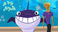 """S2 E7 Bummer tells Wipeout no one wants to watch his show """"So You Think Whales Can Dance?"""""""