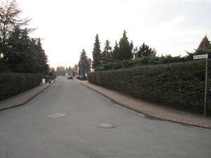 IMG 0428