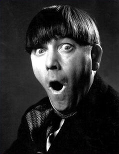 Image result for moe howard
