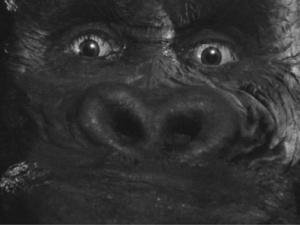 300px-Kong 1stPOV