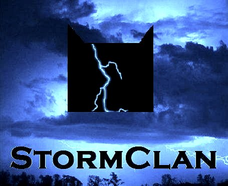 File:StormClan logo2 official crop.jpg