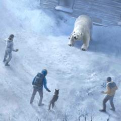 Female MC facing the polar bear with Grace, Joseph, and the husky