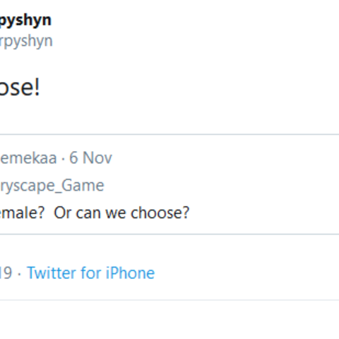 Writer confirms the option of Gender Selection for MC