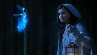 Blue Fairy 215
