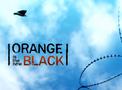 Orange Is the New Black Portal