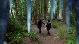 Storybrooke North Woods