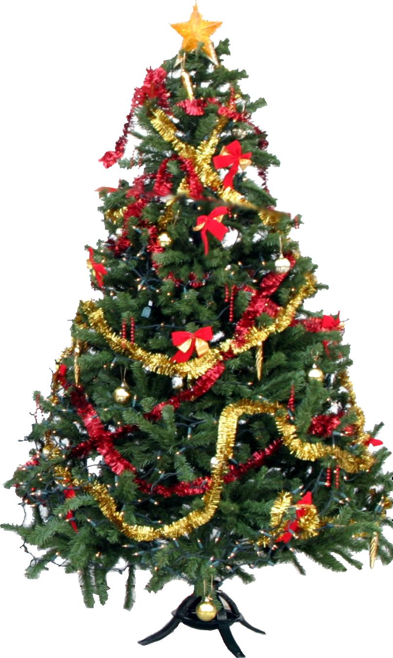 christmas treepng