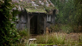 Anastasia and Will's Cottage