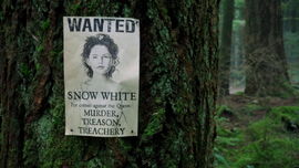 Snow's wanted posters