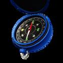 Compass Icon2