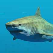 TigerShark Icon