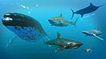 Content AquaticCreatures