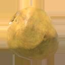 Fichier:Coconut.png