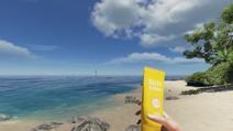 Sunscreen on hand