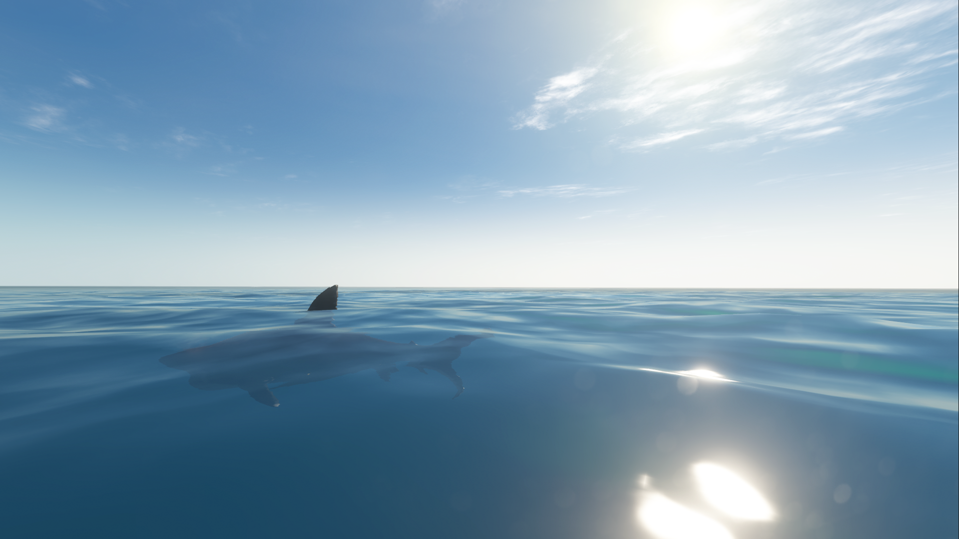 Fichier:Great White Open Water.png
