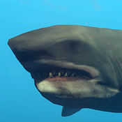 GreatWhiteShark Icon