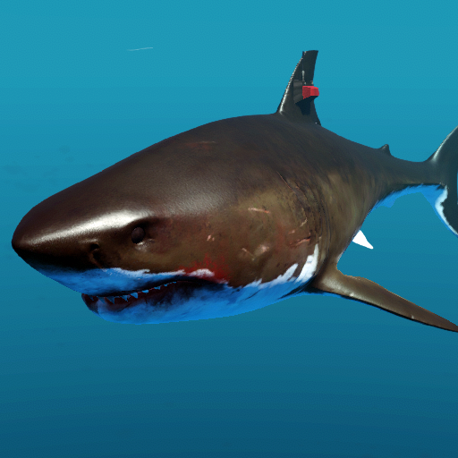 Megalodon | Stranded Deep Wiki | FANDOM powered by Wikia