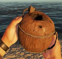 Kokosflasche