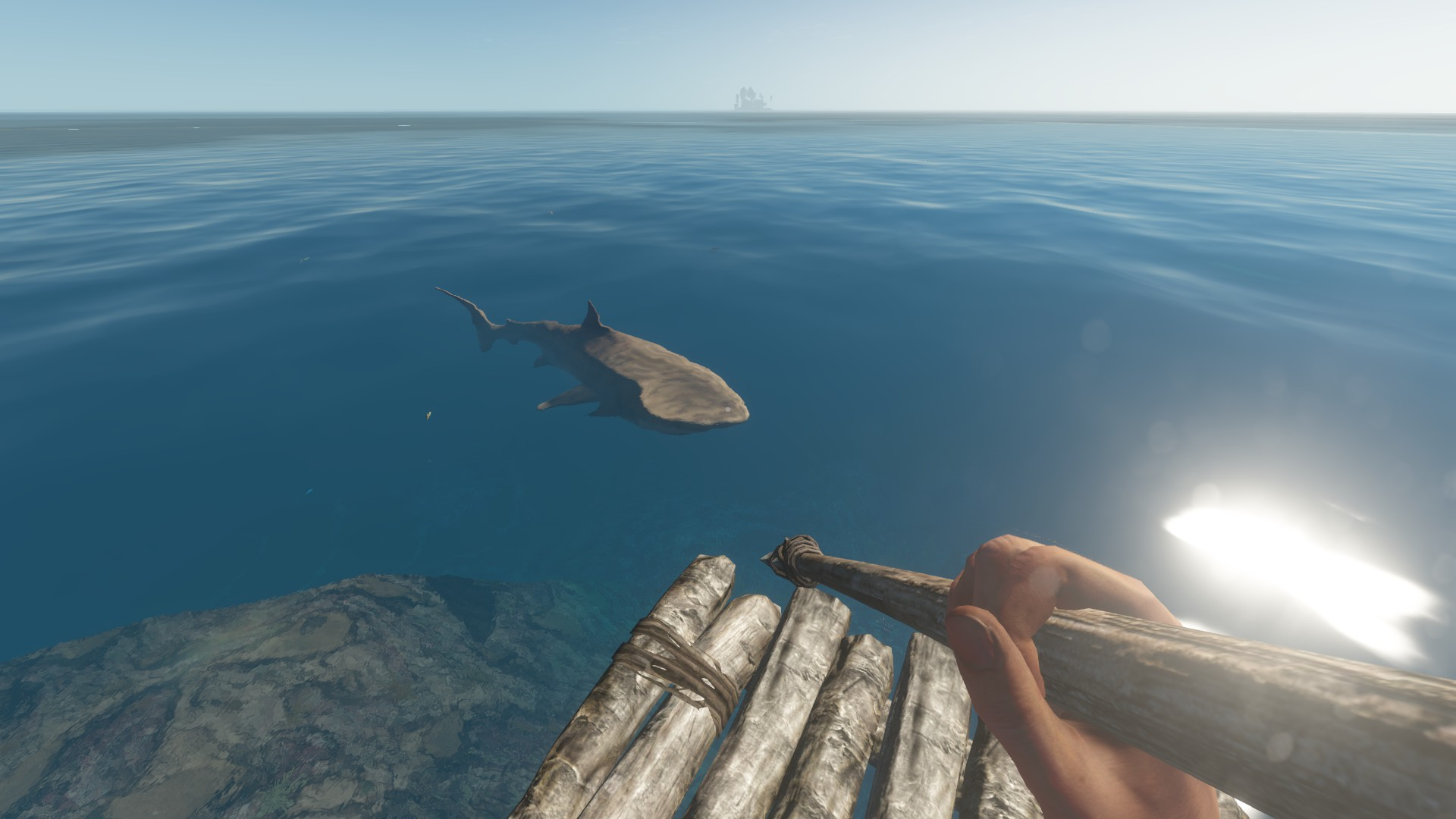 Shark | Stranded Deep Wiki | FANDOM powered by Wikia