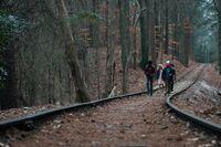 Tracks s1