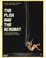 ST-The Flea and The Acrobat