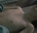 Fake body of Will Byers