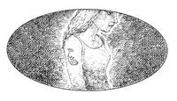 Isabel tattoo