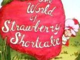 The World of Strawberry Shortcake
