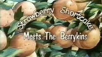 Strawberry Shortcake Meets The Berrykins - 1985