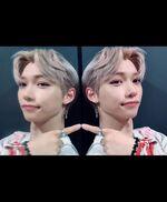Felix IG Update 20190831 (6)