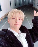 Felix IG Update 20190310 (4)