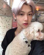 Felix IG Update 20191110 (4)
