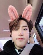 Han IG Update 20190317