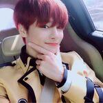 I.N IG Update 20190407 (2)