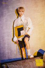 Felix Clé 2 Yellow Wood Promo Picture (1)