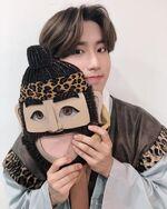 Han IG Update 20190331 (1)