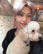 Felix IG Update 20191110 (5)