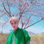 Felix IG Update 20190915 (9)