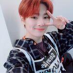 I.N IG Update 20190331 (1)