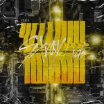 Stray Kids Clé 2 Yellow Wood digital album cover