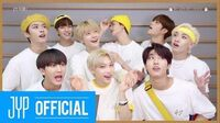 "Stray Kids ""부작용(Side Effects)"" Fan Featuring Guide Video"