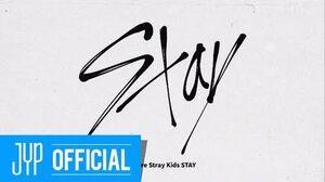 "Stray Kids FANDOM NAME ""STAY"""