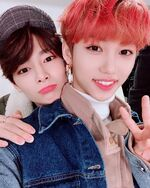 Felix and I.N IG Update 181130
