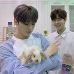 Lee Know Seungmin June 20, 2019