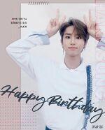 Birthday Han 2019