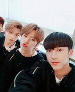 Changbin, Lee Know and Felix IG Update 180421