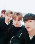 Changbin, Lee Know, Felix and Seungmin IG Update 180421