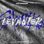 Stray Kids Clé Levanter Digital Album Cover